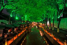 Tongli Nights